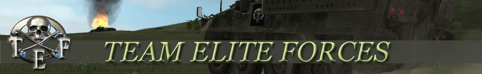 Team Elite Forces